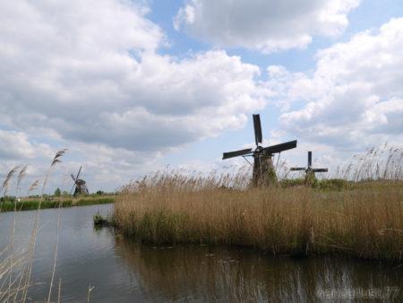 2014_0507オランダ20140358