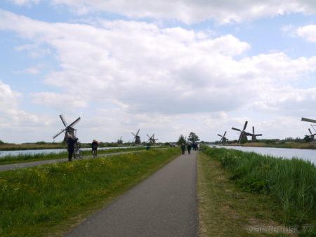 2014_0507オランダ20140403