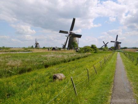 2014_0507オランダ20140339