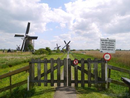 2014_0507オランダ20140336
