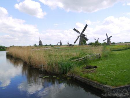 2014_0507オランダ20140284
