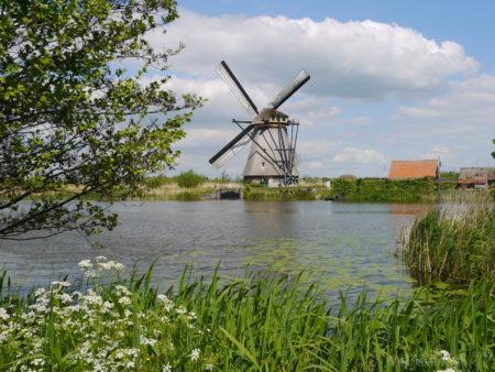 2014_0507オランダ20140213