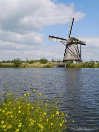 2014_0507オランダ20140174