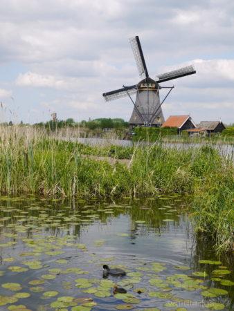 2014_0507オランダ20140183
