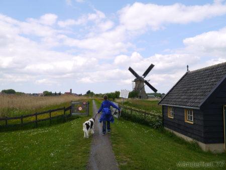 2014_0507オランダ20140269