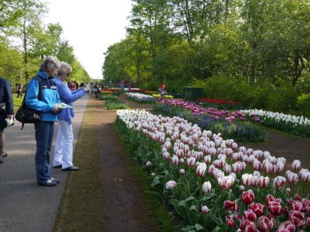 2014_0507オランダ20141409