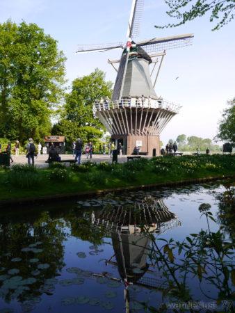 2014_0507オランダ20141450
