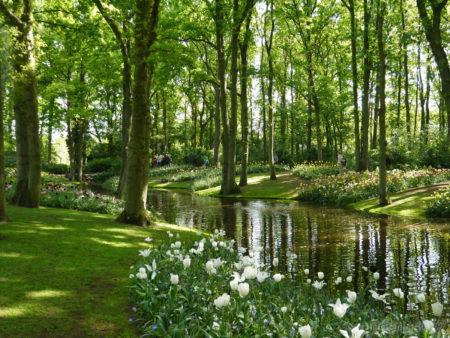 2014_0507オランダ20141560